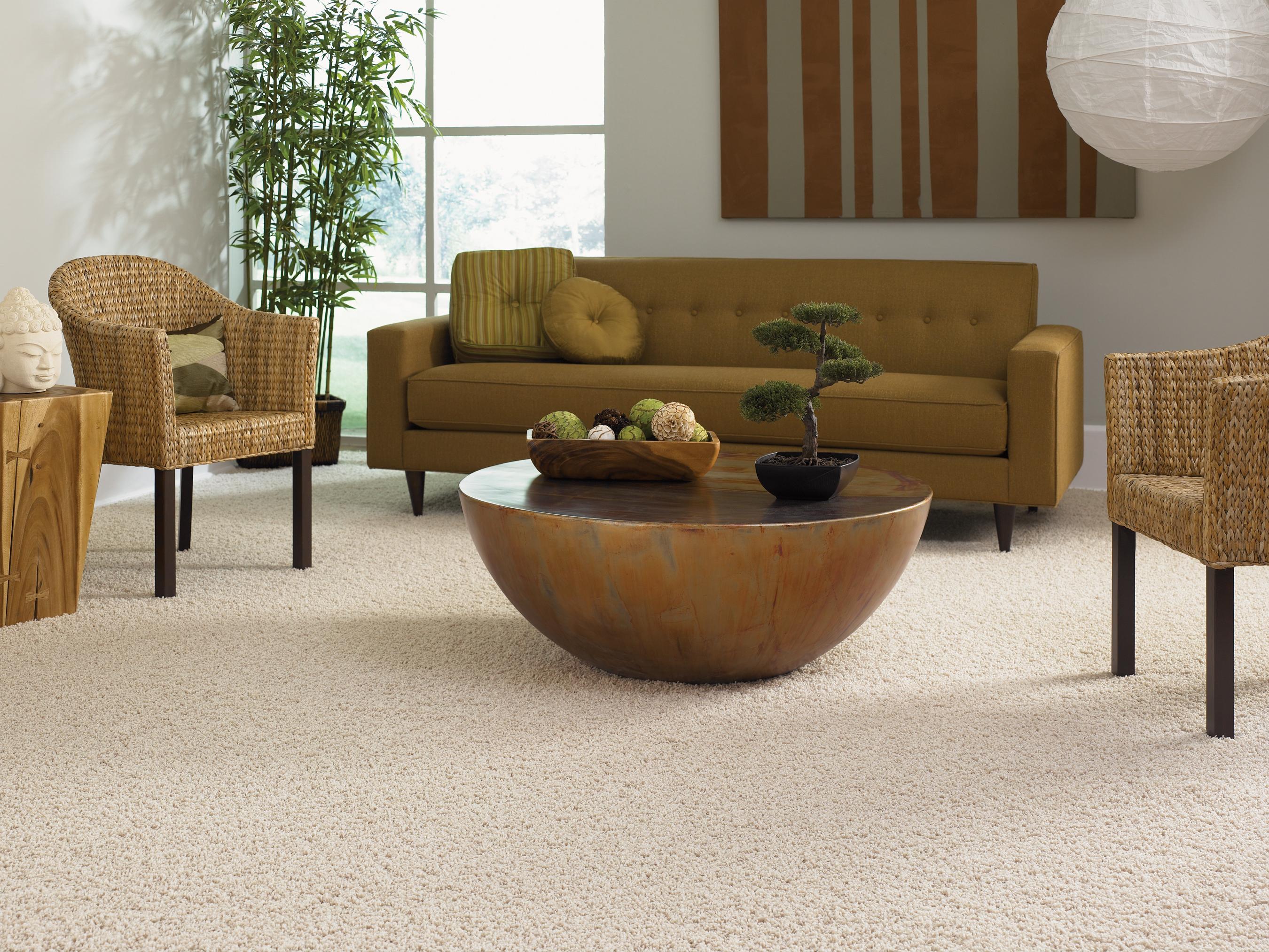 carpet-cleaning-service-basingstoke
